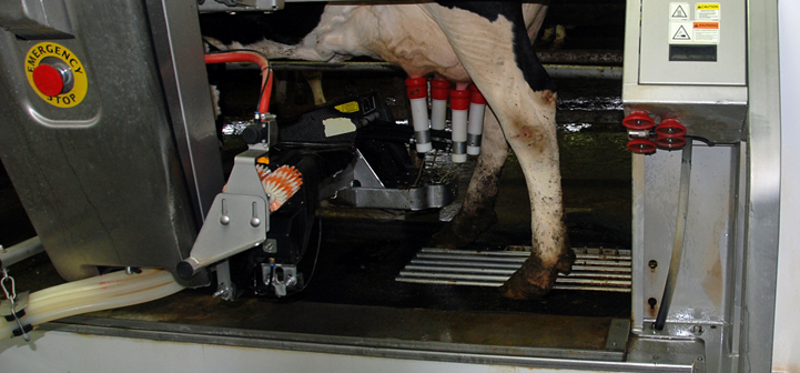 robotic milking machine